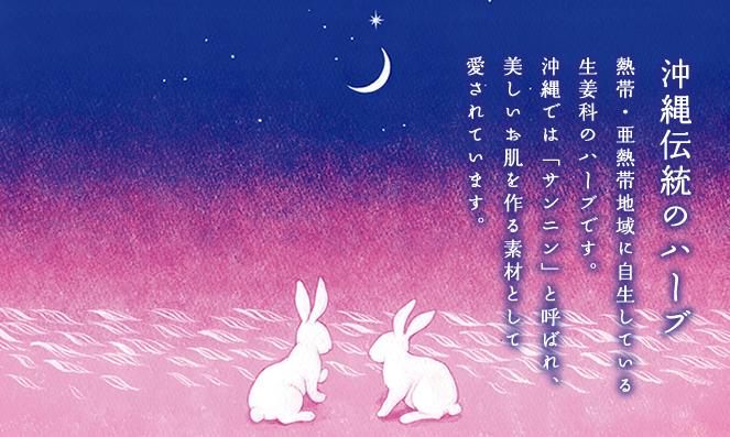 「月桃石鹸」沖縄伝統のハーブ