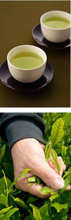 宇治茶師かねまた