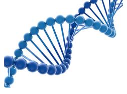 核酸DNAは身体の設計図