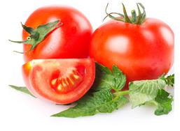 様々な栄養成分を配合