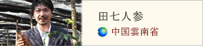 やさしさ.netコラム 田七人参