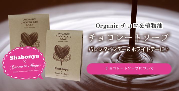 チョコレートソープ
